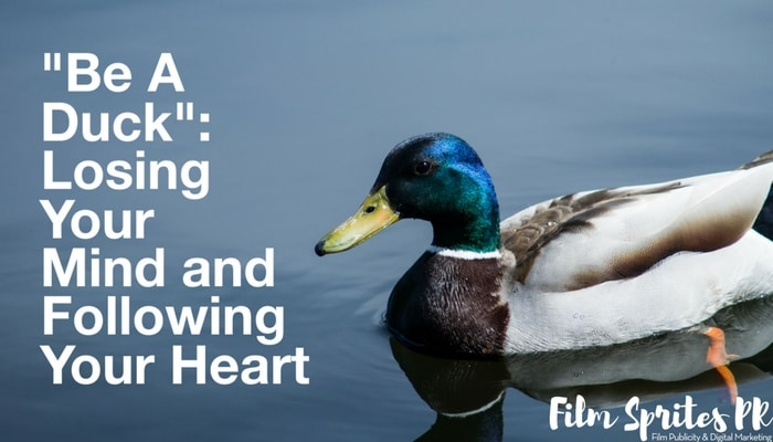 Be A Duck Losing Your Mind and Following Your Heart-min